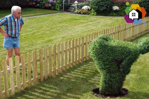 tipos de vizinhos morar sozinho