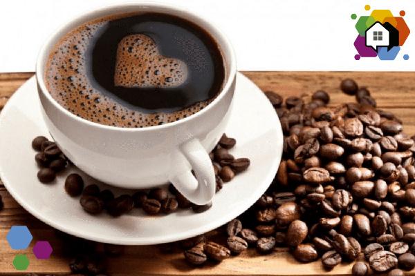 café 7 fatos morar sozinho
